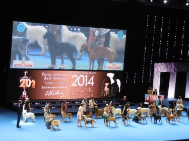 WORLD DOG SHOW FINLAND 2014-6