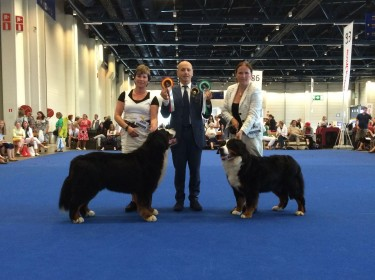 WORLD DOG SHOW FINLAND 2014-2