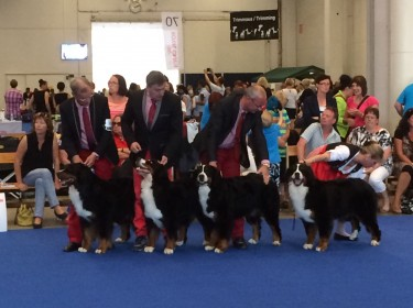 WORLD DOG SHOW FINLAND 2014-3